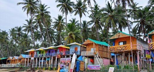 places to see in goa
