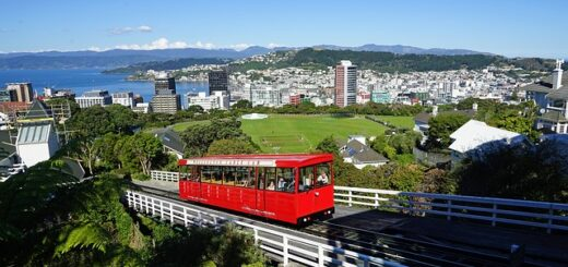 Best Places to Visit in Wellington